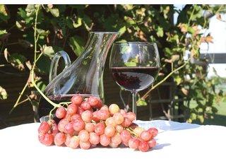 Dekantace vína