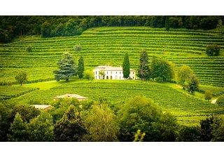 Nová vína z údolí Rhôny